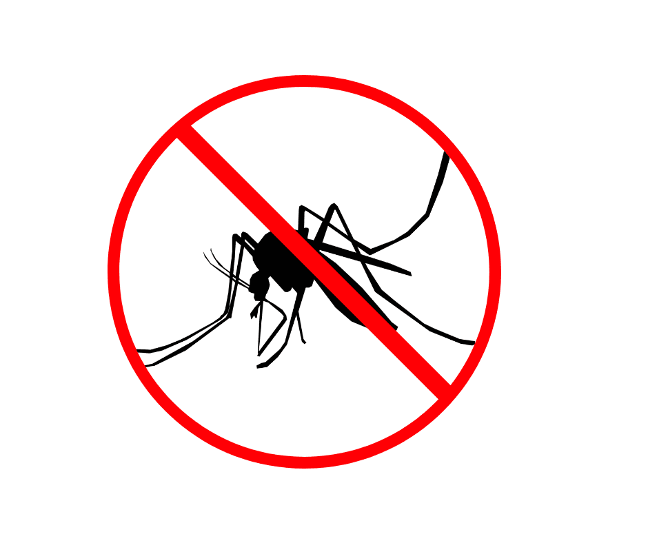 Mosquito Spraying (1)